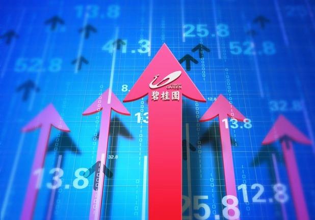 精研市场、聚焦深耕  碧桂园2019年权益销售额达5522亿元